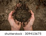 man holding soil in his hands | Shutterstock . vector #309413675