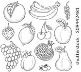 set of sketched fruits isolated ...   Shutterstock .eps vector #309442481