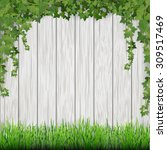 grass and hanging ivy on white... | Shutterstock .eps vector #309517469