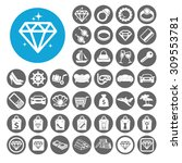 luxury icons set. illustration... | Shutterstock .eps vector #309553781
