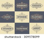 pack of labels and banners | Shutterstock .eps vector #309578099