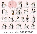 set of wedding pictures  bride... | Shutterstock .eps vector #309589145