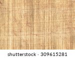 texture of papyrus paper to use ... | Shutterstock . vector #309615281