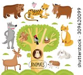 cartoon forest animals vector... | Shutterstock .eps vector #309620099