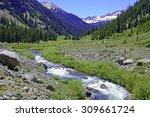 Mountain Stream In The Elk...