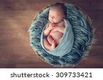 sleeping newborn baby in a... | Shutterstock . vector #309733421