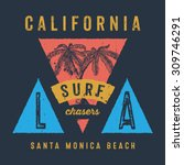 37 california surf chasers... | Shutterstock .eps vector #309746291