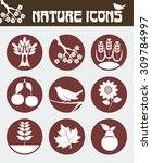 nature icon set including icons ... | Shutterstock .eps vector #309784997