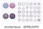 collection of 30 geometric... | Shutterstock .eps vector #309814394