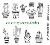 hand drawn succulent and... | Shutterstock .eps vector #309906119