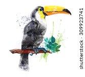 vector watercolor toucan  | Shutterstock . vector #309923741