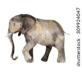 elephant painted watercolor... | Shutterstock . vector #309924047