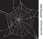 white spider web on dark... | Shutterstock .eps vector #309986384