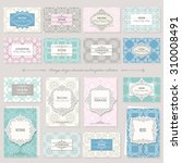 templates  cards  frames in... | Shutterstock .eps vector #310008491