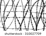 black and white barbed wire... | Shutterstock . vector #310027709