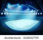 Illuminated Stadium. Vector...