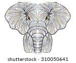 ethnic elephant | Shutterstock .eps vector #310050641