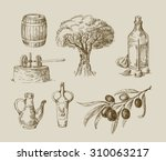 vector hand drawn olive oil... | Shutterstock .eps vector #310063217