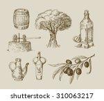 vector hand drawn olive oil... | Shutterstock .eps vector #310063217