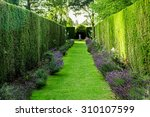 picturesque pass with green... | Shutterstock . vector #310107599