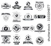 volleyball club labels with... | Shutterstock .eps vector #310204877