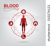 blood donation vector concept   ... | Shutterstock .eps vector #310276121