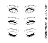 female eyes outline | Shutterstock .eps vector #310277489