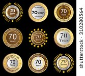 celebrating anniversary button... | Shutterstock .eps vector #310280564