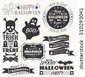 set of halloween decorative... | Shutterstock . vector #310293041