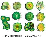 plants top view  plants layout... | Shutterstock .eps vector #310296749