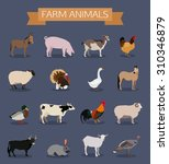 set of farm animals icons. flat ... | Shutterstock . vector #310346879