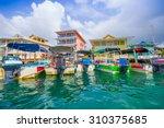 bocas  panama   april 15  2015  ... | Shutterstock . vector #310375685