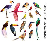 birds set colorful low poly... | Shutterstock .eps vector #310416884