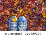 autumn season in hipster style... | Shutterstock . vector #310459334