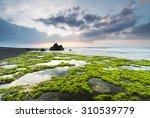 Green Rocks Beach At Bali ...