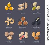 nuts and seeds icon set. almond ... | Shutterstock . vector #310633274