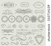 vintage set decor elements.... | Shutterstock .eps vector #310714139