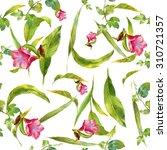 watercolor illustration of leaf ... | Shutterstock . vector #310721357