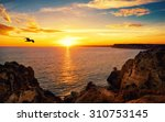 Tranquil Sunset Scenery At The...