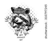 vector raccoon. white and black.... | Shutterstock .eps vector #310797245
