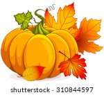 illustration of autumn pumpkin... | Shutterstock .eps vector #310844597