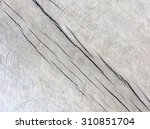 wood texture bark texture for... | Shutterstock . vector #310851704