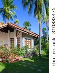 guest house among palm trees ... | Shutterstock . vector #310888475