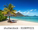 loungers and umbrella on... | Shutterstock . vector #310899221