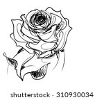 drawing  graphics with floral... | Shutterstock . vector #310930034