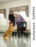 Stock photo elderly caucasian woman using walker and middle aged daugher petting dog in hallway of retirement 3109544