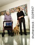 Stock photo elderly caucasian woman using walker and middle aged woman walking dog in hallway of retirement 3109547