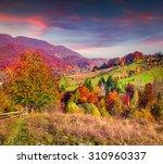 colorful autumn landscape in...   Shutterstock . vector #310960337