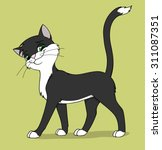 Stock vector black and white cat comes with a smug look 311087351
