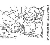 owls coloring pages vector  | Shutterstock .eps vector #311139815